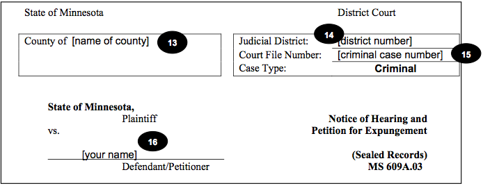 Minnesota Expungement Petition